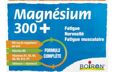 MAGNE 300 + boite éco